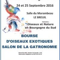 Affiche ONBS 2016